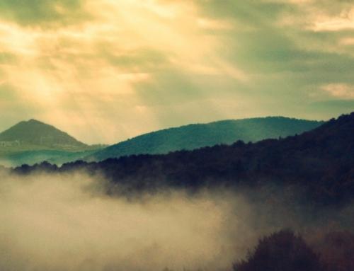 Beruf im Wandel – Wenn der Bestatter zum Trauerbegleiter wird