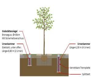 Grafik Baumbestattung in Uhingen